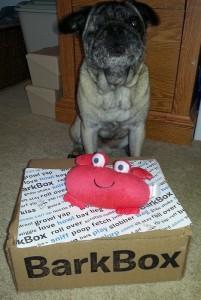 Papa Bark Box
