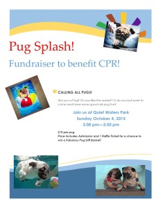 pug splash fundraiser event flyer