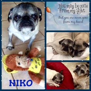 niko collage rip 120715