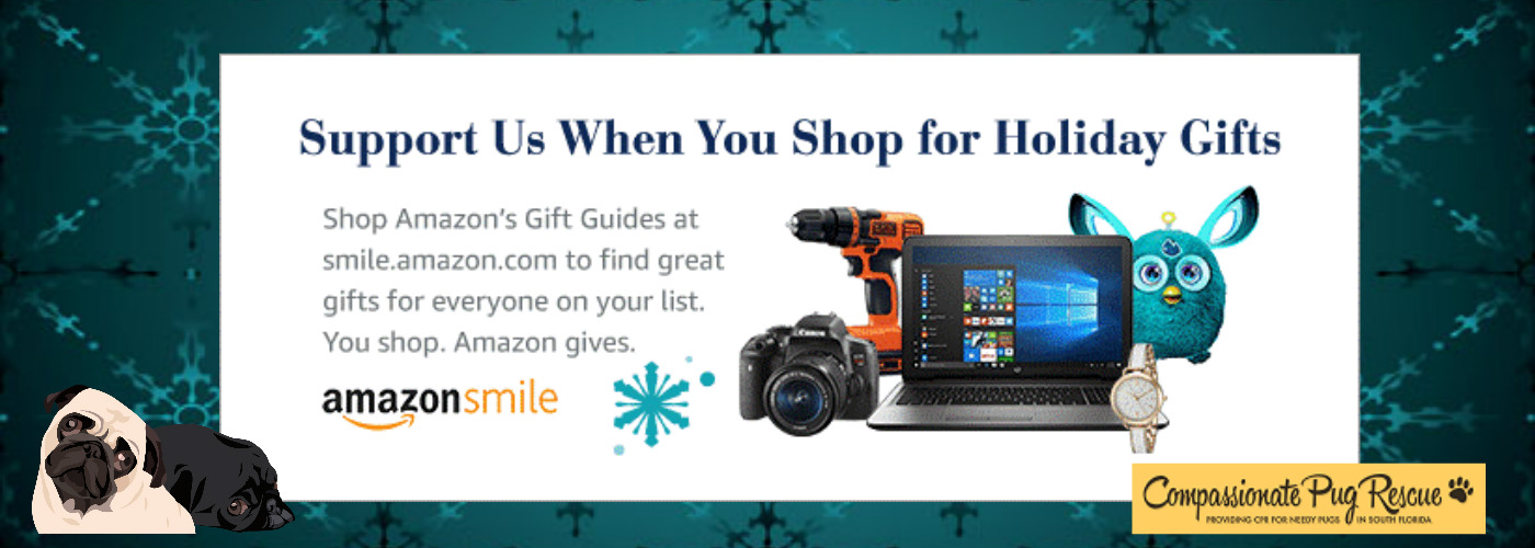 Holiday Shop with Amazon Smile and Support CPR!